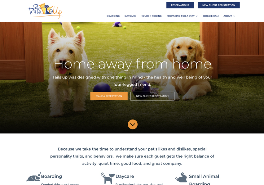 Dog daycare website example